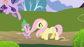 Fluttershy accidentally knocks Twilight over S1E01.png