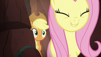 Fluttershy and AJ walk through shortcut S8E23