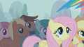Fluttershy worried look S1E06.png