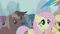 Fluttershy worried look S1E06