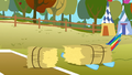 Haybale lands on Rainbow Dash S1E13.png