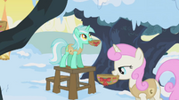 Lyra Heartstrings and Twinkleshine hanging bird nests S01E11