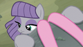 Maud Pie looking down from the ledge S7E4.png