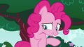 """Pinkie Pie """"I mean, it's not"""" S6E15.png"""