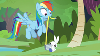 Rainbow Dash and Angel using tape measure S7E5