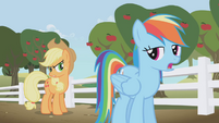 Rainbow Dash was busy S1E3