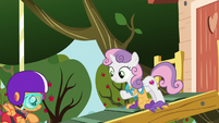 "Sweetie Belle ""that's amazing!"" S6E4"