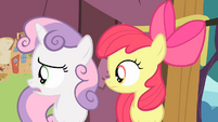 Apple Bloom and Sweetie Belle sees Scootaloo S4E05