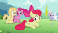 Apple Bloom noticing another cutie mark S2E06.png