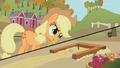 Applejack about to toss a horseshoe S1E13.png