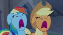 Applejack e Rainbow Dash gritando T4E03