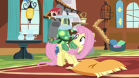 Fluttershy sees Tank sleeping while flying S5E5