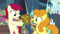 "Golden Harvest ""perfect!"" S7E19.png"