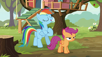 "Rainbow Dash ""follow in my hoofsteps"" S8E20"