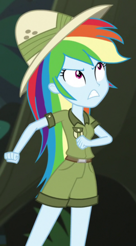 File:Rainbow Dash jungle adventurer ID EGS1.png