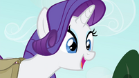 Rarity -You don't mind, do you, Spike-- S4E23