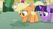 S02E06 Applejack i Twilight widzą, że kwiat nie rośnie