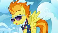 Spitfire cutie mark S3E07