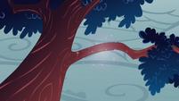 Tree branch fixed by Rarity S1E8