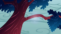 Tree branch fixed by Rarity S1E8