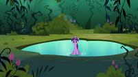 Twilight on the pond S3E05