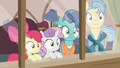 Apple Bloom, Sweetie Belle, and Petunia's parents hear Scootaloo S6E19.png