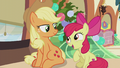 Apple Bloom asks about the flag raising S5E20.png