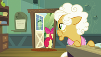 Apple Bloom leaving the house again S9E10