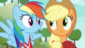 Applejack and Rainbow look at each other S6E18.png