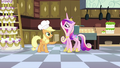 Applejack giving bag of apple fritters to Cadance S2E25.png