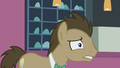 """Dr. Hooves """"Straight?"""" S5E9.png"""