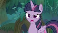 """Fake Twilight Sparkle """"how do you know?"""" S8E13"""
