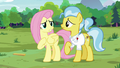 """Fluttershy """"I'm the one who should be sorry"""" S7E5.png"""