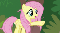 "Fluttershy ""a massage every day"" S9E18"