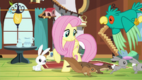 Fluttershy gathering animals together S5E3