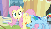 Fluttershy surprised S3E2