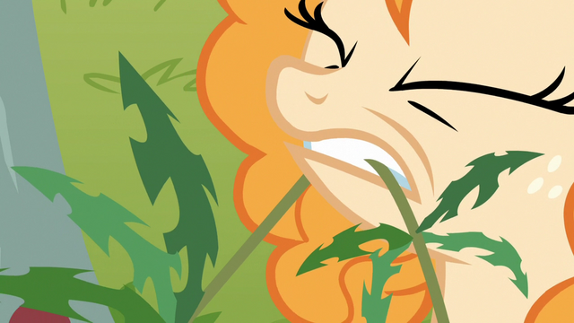 File:Pear Butter pulls on a weed S7E13.png