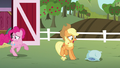 Pinkie and Applejack leave the barn S5E11.png