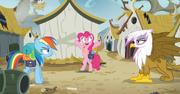 S05E08 Pinkie zawsze potrafi zażartować
