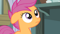 Scootaloo hearing Rainbow Dash talking S4E05