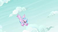 Silverstream follows Rainbow's dive-bomb S9E3