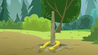 Skeedaddle's horseshoe lands on the pole S7E21
