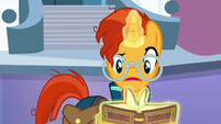 Sunburst flips through the book S6E2