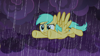 Sunshower Raindrops in the storm S9E17