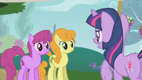 Twilight tells Golden Harvest and Berryshine to start over S1E10