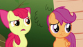 "Apple Bloom ""why in tarnation would you promise"" S6E19.png"