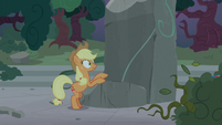 Applejack sees Rainbow fly into the bushes S7E25