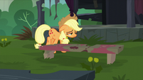 Applejack taking a break S5E16