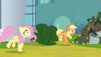Fluttershy and AJ feel the ground shake S9E13