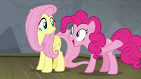"Pinkie Pie ""it's the perfect plan!"" S8E7"